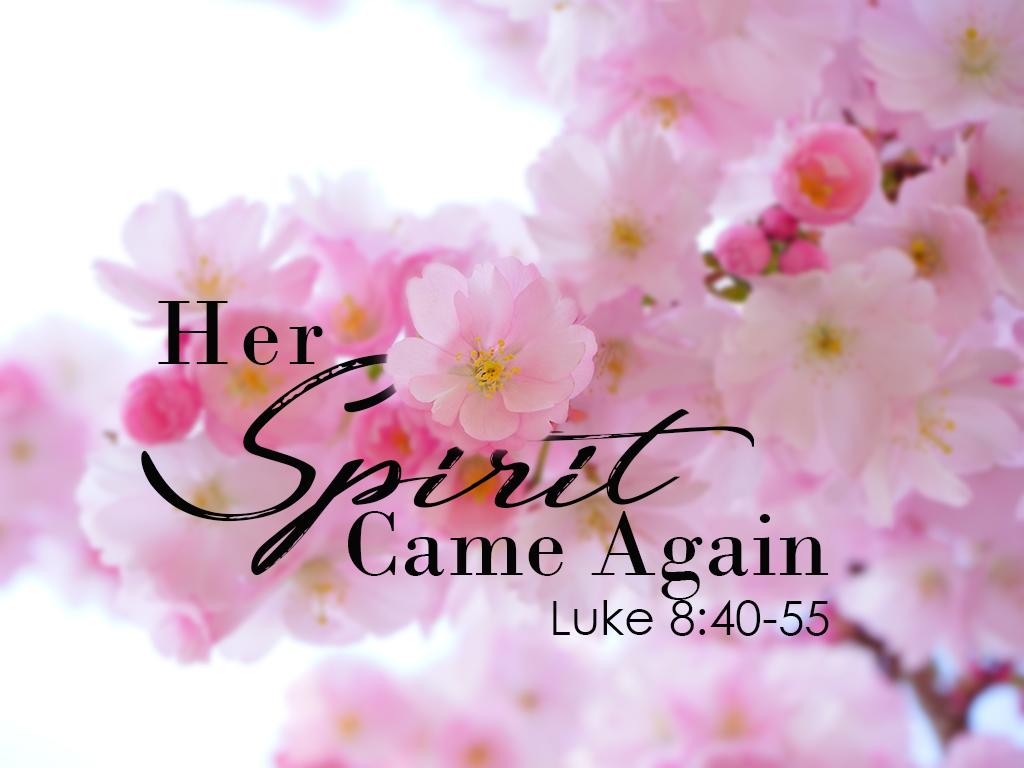 Her Spirit Came Again